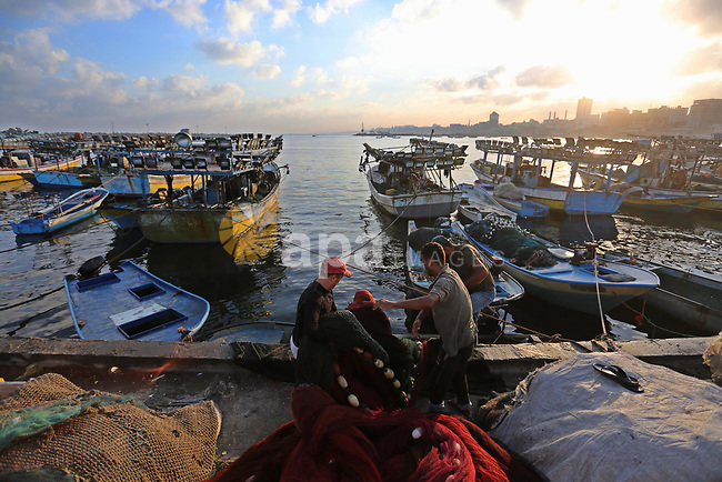 Palestinian fishermen collect fish for sale, at Gaza seaport, on August 15, 2018. The fishing zone off Gaza's coast was also restored to 17km (nine nautical miles), having been reduced to 6km. Photo by Ashraf Amra