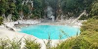 Champagne Pool in Wai-O-Tapu Thermal Wonderland, Rotorua Region, Central Plateau, North Island, New Zealand, NZ