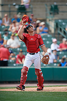 Rochester Red Wings catcher Anthony Recker (30) during a game against the Columbus Clippers on August 9, 2017 at Frontier Field in Rochester, New York.  Rochester defeated Columbus 12-3.  (Mike Janes/Four Seam Images)