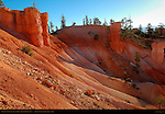 Bryce Canyon Landscape at Sunrise, Queen's Garden Trail, Bryce Canyon National Park, Utah