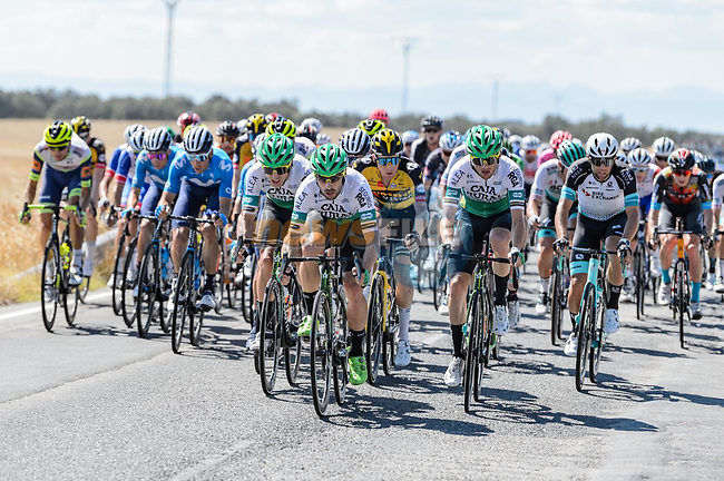The peloton during Stage 15 of La Vuelta d'Espana 2021, running 197.5km from Navalmoral de la Mata to El Barraco, Spain. 29th August 2021.    <br /> Picture: Cxcling | Cyclefile<br /> <br /> All photos usage must carry mandatory copyright credit (© Cyclefile | Cxcling)
