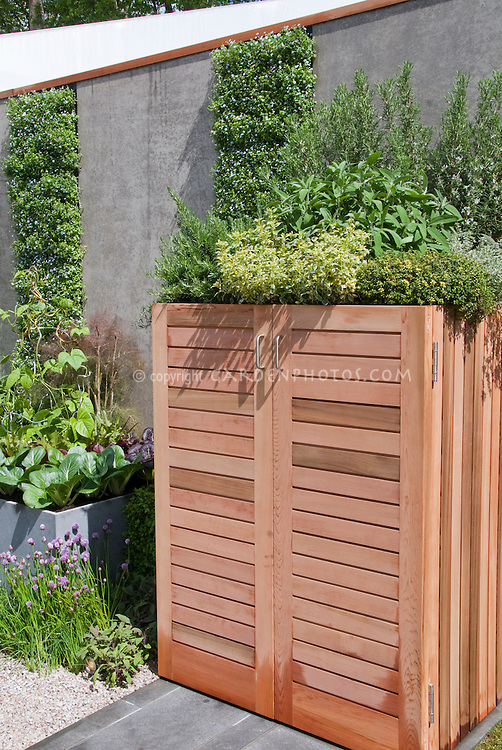 Herbs growing atop storage shed container