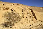 Wadi Etek in Eilat Mountains