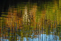 Siamese Pond, Siamese Ponds Wilderness Area, Adirondack Forest Preserve, New York