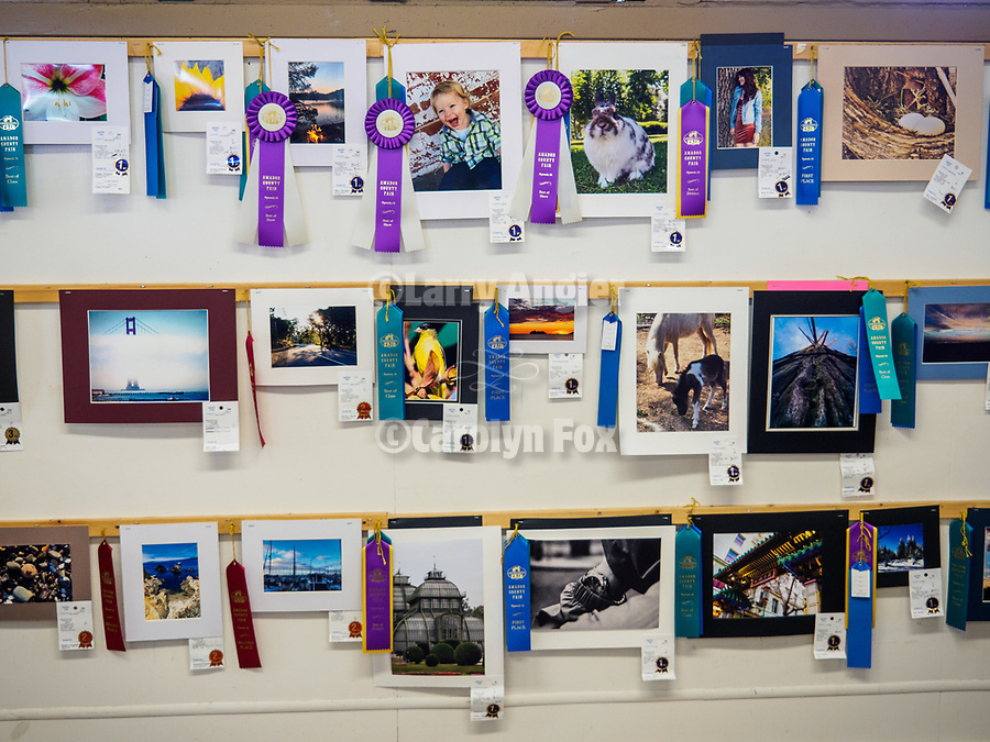 Youth photography, Friday at the 80th Amador County Fair, Plymouth, Calif.<br /> .<br /> .<br /> .<br /> .<br /> #AmadorCountyFair, #1SmallCountyFair, #PlymouthCalifornia, #TourAmador, #VisitAmador