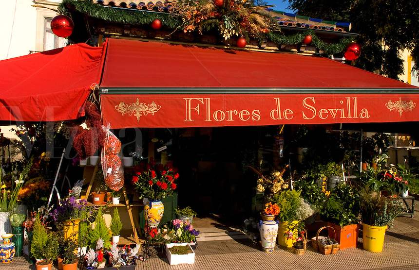 Colorful Flower shop of Seville or Sevilla, Spain