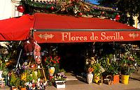 Colorful Flower shop of Seville or Sevilla, Spain
