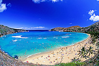 A  perfect tropical day at Hanauma Bay with sunbathers and snorkelers enjoying the clear blue water and white sand crescent beach. Good view of circular volcanic crater framing the beach.