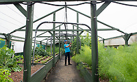 BNPS.co.uk (01202) 558833<br /> Pic: BNPS<br /> <br /> Pictured: Antonio Paladino in the garden nursery<br /> <br /> Something fishy or food for thought?<br /> <br /> A chef turned farmer is leading the way in sustainable farming by using fish poo as fertiliser.<br /> <br /> Antonio Palladino farms organically-fed rainbow trout and uses their waste to grow about 50 different fruits and vegetables without the need for soil.<br /> <br /> He says using fish waste as fertiliser is the most sustainable farming method and produces a bigger and much tastier crop.