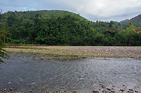 Haiti, Gros-Morne. River.