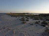 SEA_LOCATION_80399