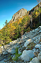 Steep is not an understatement when it comes to the terrain below Eagle Cliff in New Hampshires Franconia Notch State Park.