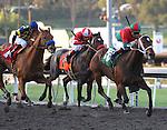 February 13, 2010. Jeranimo riden by Martin Garcia, wins The Strub Stakes at Santa Anita Park, Arcadia, CA