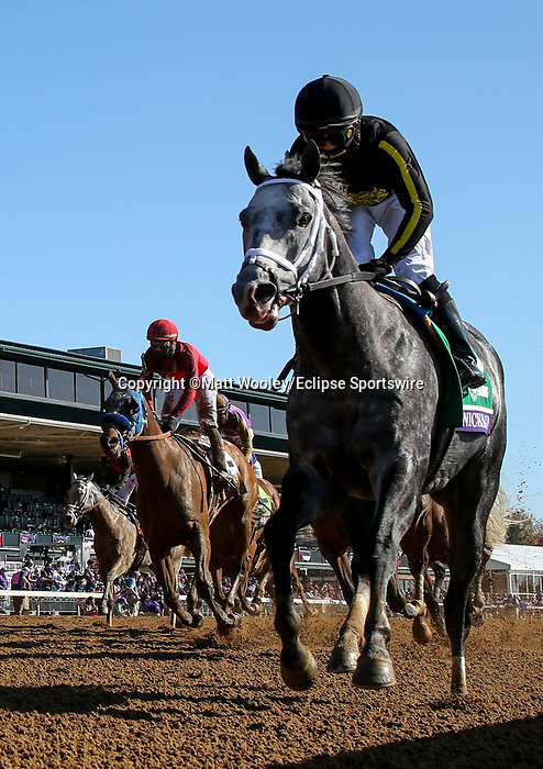 November 7, 2020 : Knicks Go, ridden by Joel Rosario, wins the Big Ass Fans Dirt Mile on Breeders' Cup Championship Saturday at Keeneland Race Course in Lexington, Kentucky on November 7, 2020. Matt Wooley/Eclipse Sportswire/Breeders' Cup/CSM
