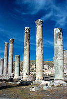 The Temple of Artemis in Jerash (The Ancient Gerasa)  Jordan. The Middle East.