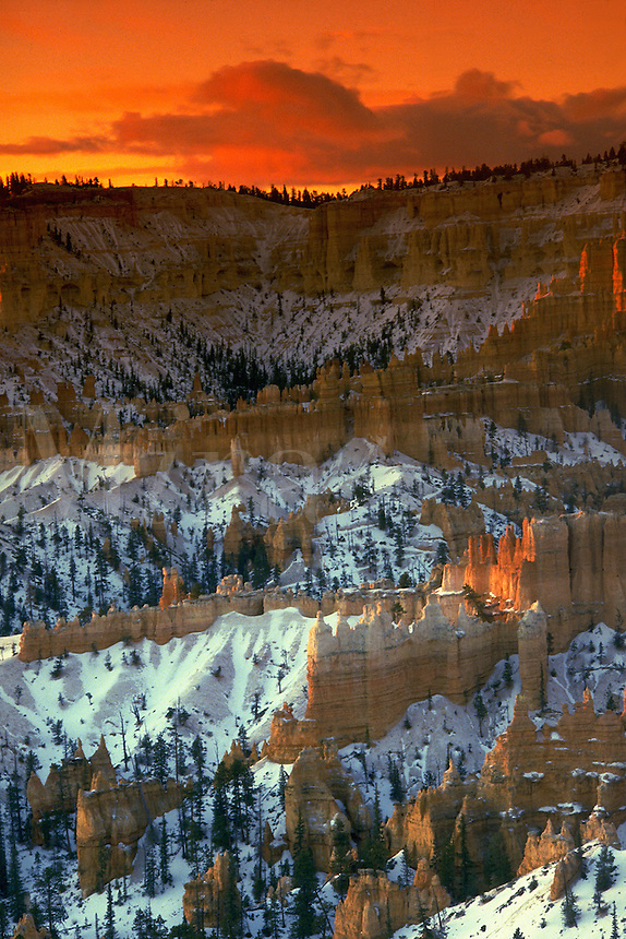 Sunrise in Bryce Canyon National Park at Sunset Point. Utah, Bryce Canyon National Park.