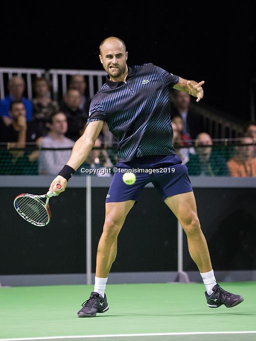 Rotterdam, Netherlands, 10 februari, 2019, Ahoy, Tennis, ABNAMROWTT, MARIUS COPIL (ROU)  Photo: Henk Koster/tennisimages.com