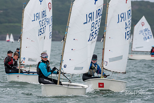 Royal Cork Optimists competing in Cork Harbour