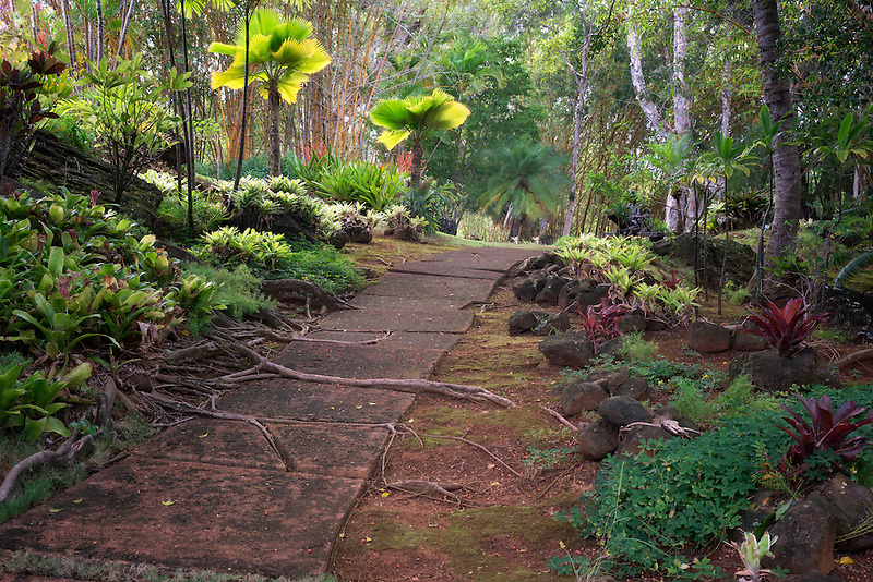 Path in Na Aina Kai Botanical Gardens, Kauai, Hawaii