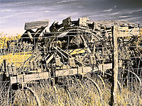 Abandoned farm machinery, infrared