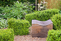 Buxus boxwood shrubs and wooden garden seat bench, with white bleeding heart perennial flowers Lamprocapnos (formerly Dicentra) spectabilis Alba, azaleas, Stachys, wall, in pretty spring garden scene in green and white color theme