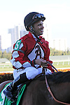 Jockey Jose A Lezcano heads to the Winners' Circle after winning a claim of foul by Gary Stevens, the rider of #10 Old Time Hockey in the Florida Sunshine Millions Turf  at  Gulfstream Park, Hallandale Beach, Florida 01-18-2014