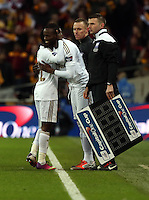 Pictured: (L-R) Nathan Dyer and Roland Lamah. Sunday 24 February 2013<br /> Re: Capital One Cup football final, Swansea v Bradford at the Wembley Stadium in London.