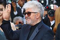 Pedro ALMODÓVAR, la derniere montée pour la Palme d'Or, soixante-dixième (70ème) Festival du Film à Cannes, Palais des Festivals et des Congres, Cannes, Sud de la France, dimanche 28 mai 2017.