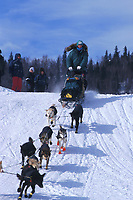 L Fiedler Leaving Grayling 99 Iditarod AK