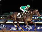 Nov.4, 2011.Royal Delta ridden by Jose Lezcano and trained by William I. Mott  leading in the stretch and winning the  Breeders' Cup Ladies' Classic at Churchill Downs, Louisville, KY