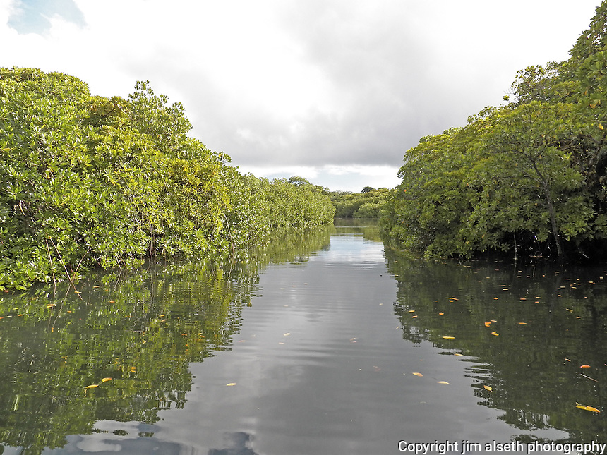 The inter-island waterways interspersed throughout the Islands of Yap.