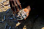 Kalepo, Tanzania. hands holding a small enamel bowl of dagaa, sun dried fish.