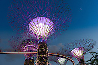 Supertrees illumination show and Skyway bridge in the Gardens by the Bay, Singapore
