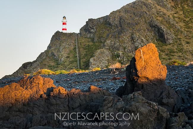 Cape Palliser at sunrise, Palliser Bay, Wellington Region, North Island, New Zealand, NZ