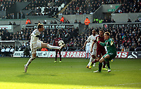 Saturday 2nd March 2013<br /> Pictured: (L-R) Michu, Ashley Williams, Rob Elliot.<br /> Re: Barclays Premier Leaguel, Swansea  v Newcastle at the Liberty Stadium in Swansea.
