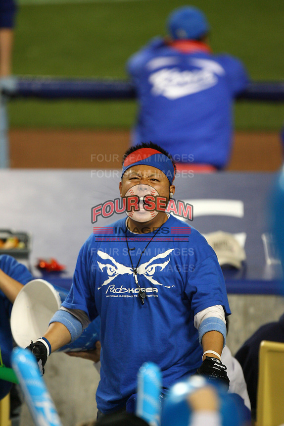 Korean fan during a game against Japan at the World Baseball Classic at Dodger Stadium on March 23, 2009 in Los Angeles, California. (Larry Goren/Four Seam Images)