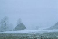 Europe/France/Auvergne/15/Cantal/Parc Naturel Régional des Volcans: Le massif du Puy Mary (1787 mètres) et la vallée de la Cheylade en hiver