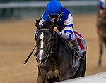 September 3, 2020:  FGirl daddy with Joe Talamo wins the Pocahontas Stakes at Churchill Downs in Louisville, Kentucky, on September 03, 2020. Evers/Eclipse Sportswire/CSM