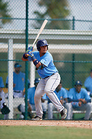 Tampa Bay Rays catcher David Rodriguez (48) at bat during an Instructional League game against the Pittsburgh Pirates on October 3, 2017 at Pirate City in Bradenton, Florida.  (Mike Janes/Four Seam Images)