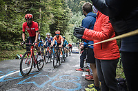 Thomas De Gendt (BEL/Lotto Soudal) leading a small group up the Col de Marie Blanque<br /> <br /> Stage 9 from Pau to Laruns 153km<br /> 107th Tour de France 2020 (2.UWT)<br /> (the 'postponed edition' held in september)<br /> ©kramon