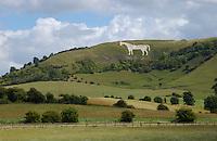 The Westbury or Bratton White Horse is a hill figure on the escarpment of Salisbury Plain
