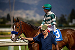 MAR 07: Gamine with Drayden Van Dyke wins at Santa Anita Park in Arcadia, California on March 7, 2020. Evers/Eclipse Sportswire/CSM