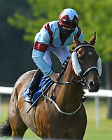 The Lords Walk ridden by Rhys Clutterbuck goes down to the start of The AJN Steelstock Beckie Lawrence Handicap  during Horse Racing at Salisbury Racecourse on 9th August 2020