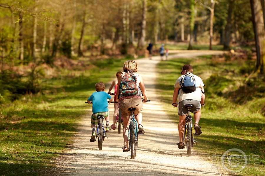 Cyclists in the New Forest .  April 2011 pic copyright Steve Behr / Stockfile