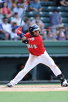 Second baseman Wendell Rijo (11) of the Greenville Drive bats in a game against the Augusta GreenJackets on Sunday, July 13, 2014, at Fluor Field at the West End in Greenville, South Carolina. Rijo is the No. 18 prospect of the Boston Red Sox, according to Baseball America. Greenville won, 8-5. (Tom Priddy/Four Seam Images)