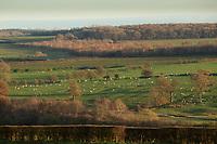 23.11.2020 Landscape in Rutland<br /> ©Tim Scrivener Photographer 07850 303986<br />      ....Covering Agriculture In The UK....