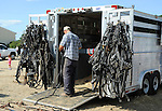 Farmer tending to tack at horse trailer at Cheshire Fair in Swanzey, New Hampshire USA