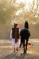 dancing Marwari stallion, Nawalgarh, Rajasthan, India