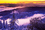 Fresh snow, clearing winter storm at dusk, upper Panther Creek in the SIerra nevada of Calif.