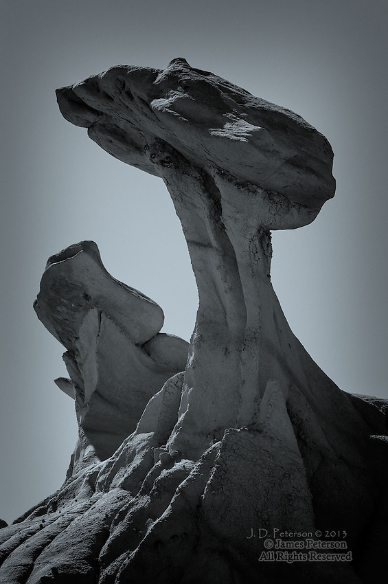 Wings, Bisti Badlands, New Mexico